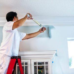 Painting Mississauga Handyman